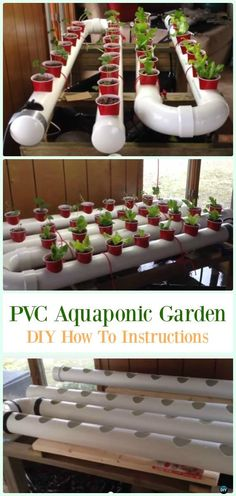 Hydroponic gardening 158189005650590051 - Gravity-Based PVC Aquaponic Garden DIY Instructions – Low Budget DIY PVC Garden Projects Source by essentialplay gardening indoor pvc