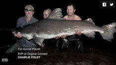 """19 Unbelievable Fish Jeremy Wade Caught On """"River Monsters"""" Jeremy Wade, John Wade, Gone Fishing, Best Fishing, Fishing Trips, Monster Pictures, River Monsters, Giant Fish, Monster Fishing"""