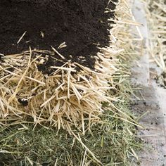 How to Grow Without Digging Bloodmeal adds nitrogen and bonemeal adds phosphorus to the layers, which is key to fostering decomposition of the hay and straw.