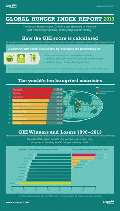 2013 Global Hunger Index Report by Concern Infographics