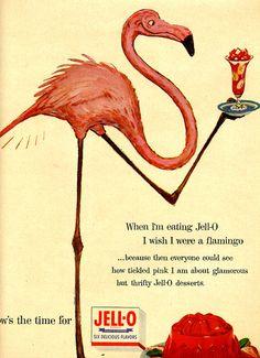 1954 pink flamingo jello ad