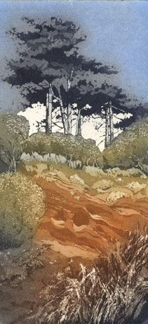 Chrissy Norman etching - I love the inking on this print, and the composition and colours. Landscape Prints, Landscape Art, Landscape Paintings, Landscapes, Illustrations, Illustration Art, Etching Prints, Guache, Japanese Art