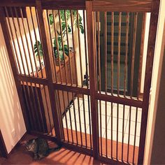 Cat Gate, Narrow House, Pet Door, Pets 3, Cat Room, Pet Peeves, Ikea Furniture, Furniture Ideas, Animals And Pets