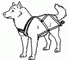 22 best dog harness designs images pets dog stuff big dogs School Bus Seat Belt Harness make your own sledding freighting or carting harnesses