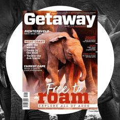 Cape Malay roti recipe - Getaway Magazine South African Bobotie Recipe, Seen Graffiti, Wetland Park, Secret Hideaway, List Challenges, Thoughts And Feelings, World Heritage Sites, Road Trip, Roti Recipe