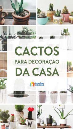 Plants, Flower Arrangements, Floral Arrangements, Plant Decor, Vegetable Gardening, Cactus Plants, Diy Home, Gardening, Balcony