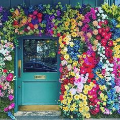 Colourful wall of flowers at the @ivychelsgarden = ❤️ pc: @kcovophoto #lovelylittlelondon