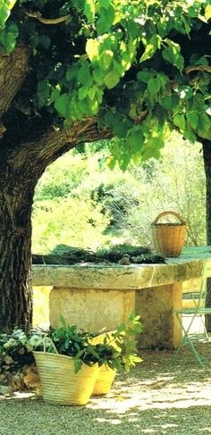 A stone table perfect for dining, making flower arrangements or cleaning garden bounty. How would you use your stone table?  #outdoorfurniture  #Provenwinners