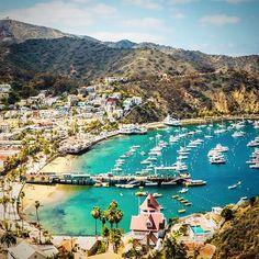 Catalina Island, California, USA