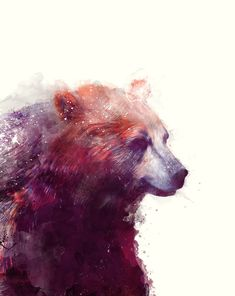 Beautiful and Dream Like Illustrations by Amy Hamilton - Bear