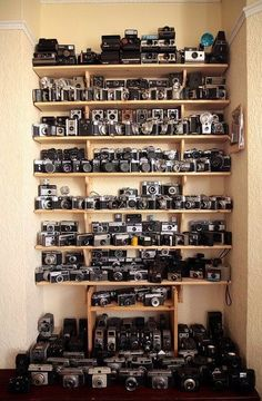 Vintage Cameras / Old Cameras. My word if I stood in front of all of these I would cry out of happiness! Antique Cameras, Vintage Cameras, Photography Camera, Love Photography, Photography Illustration, Photography Equipment, Foto Picture, Camera Photos, Photo Deco