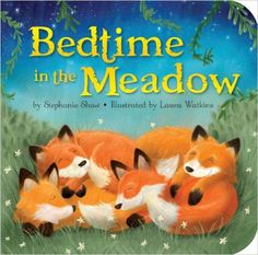 Bedtime in the Meadow (Padded Board Books): Stephanie Shaw, Laura Watkins: 9781589256286: Amazon.com: Books