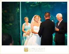 Bride and groom, Wedding ceremony, FLORIDA AQUARIUM Wedding, Limelight Photography, Wedding Photography stepintothelimelight.com