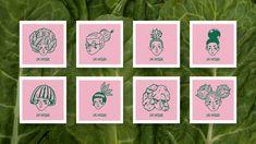 Provincia - Estudio Creativo Design Agency, Branding Design, Logo Design, Graphic Design, Visual Identity, Brand Identity, Dynamic Logo, Article Design, Salad Bar
