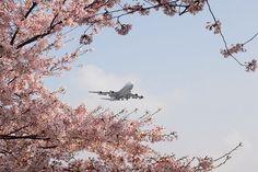 福岡空港 | 福岡空港