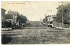 HESPERIA, MI. MAIN STREET SCENE EARLY 1900s OCEANA COUNTY MICH. POSTCARD 1907 PC