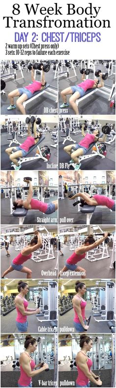 8 Week Body Transformation Day 2: Chest and Triceps