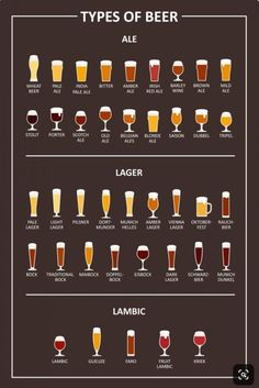 Ales vs Lagers : The Two Main Types of Beer - Many people ask what is the differ. - Ales vs Lagers : The Two Main Types of Beer – Many people ask what is the difference of Ales vs L - Beer Infographic, Beer Types, Different Types Of Beer, Porter Beer, Beer Pairing, Home Brewing Beer, Beer Recipes, In Vino Veritas, Wine And Beer