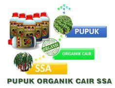 081-355-555-216 jual pupuk organik cair, Distributor pupuk organik, agen Pupuk Organik, Harga Pupuk Organik,