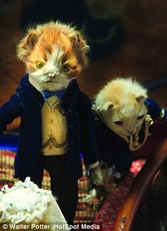 Wedding cats - Walter Potter taxidermy
