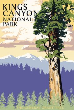 General Grant Tree, Kings Canyon National Park, CA