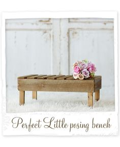 Perfect Little Newborn Posing Bench photography prop
