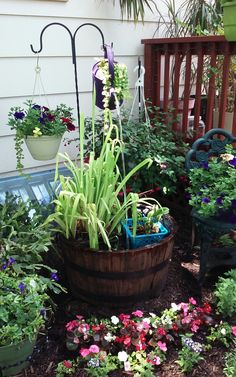 My herb garden next to the deck and whiskey barrel water feature