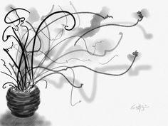 preto / branco http://www.flickr.com/photos/suelycm/
