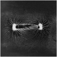 Photographs of magnetism byLing MengTitle: Terence McKenna