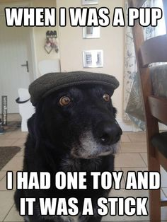 Old pup remembers his childhood