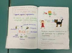 OK zeszyt» Blog Archive » Rozdział 7. Ciekawe pomysły Praktyków Teacher, Bullet Journal, Education, Blog, Maths, School Ideas, Kids, Professor, Teachers