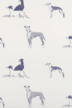 Long Dog Wallpaper - Emily Bond. as an accent of course, or perhaps even to wallpaper the back of a bookshelf or some furniture. dog fabrics here too