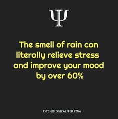 the smell of rain can literally relieve stress and improve your mood by over Psychology Says, Psychology Fun Facts, Psychology Quotes, Fact Quotes, Life Quotes, Qoutes, Sarcastic Quotes, Psycho Facts, Physiological Facts