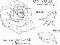 Year of Flowers: Roses Stamp Set - PaperTrey