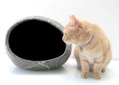 Katzen-Schlaf-Kiesel