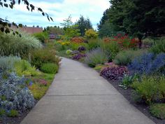 Kudos to whoever came up with the idea to locate resort accommodations in a display garden. The Oregon Garden in Silverton is just that. Silver Creek Falls, Oregon Garden, My Secret Garden, Walkways, Garden Inspiration, Beautiful Gardens, Gardening Tips, Things To Do, Landscaping