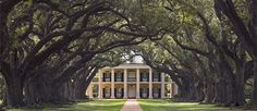 This is Oak Alley Plantation in Vacherie, Louisiana. This is my dream home. Unfortunately, it is a National Historic Landmark being used as a restaraunt and inn and it is not for sale. :(