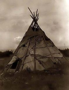 Here for your consideration is an old picture of a Tepee made of Grass. It was created in 1910 by Edward S. Curtis. The Photograph shows a reed mat covered tepee in agrassy field in Washington state.