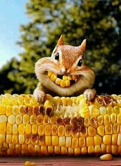 Haz que tu sonrisa sea tu mejor accesorio jaja  :D