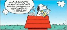 oh no! Poor Woodstock!