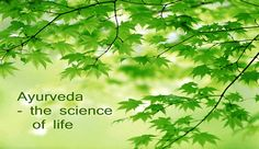 """Ayurveda is India's 5,000-year-old """"The Science of Life."""" This is life in harmony with nature's art, which explain the nature of the universe. When we understand Ayurveda, we understand ourselves, how we """"tick"""" and how we can become our health and happiness."""