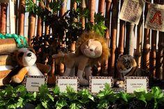 Safari Themed