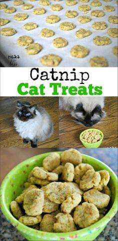 Cat Recipes, Dog Food Recipes, Free Recipes, Chicken Recipes, Dinner Recipes, Chicken Ideas, Dinner Menu, Food Tips, Dinner Ideas
