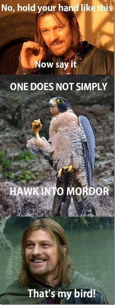 That's my bird!