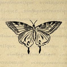 Butterfly Clip Art, Butterfly Images, Vintage Butterfly, Butterfly Illustration, Illustration Art, Little Tattoos, Future Tattoos, Piercings, Body Art Tattoos