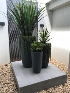 Modern Outdoor Big Concrete Planters Pots – Balcony Decoration Ideas in Every Un… - Balkon Dekoration Balcony Planters, Concrete Planters, Planter Pots, Balcony Garden, Garden Path, Modern Planters, Outdoor Pots And Planters, Outdoor Potted Plants, Modern Gardens