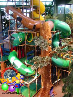 Great photo of the large indoor themed tree we designed and manufactured in this huge themed indoor playground for the City of Edina. www.iplayco.com or sales@iplayco.com  ~  #weCREATfun #weBUILDfun