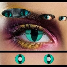 colored contact lenses-blue lense Chechire cat