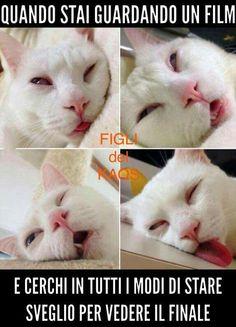 Quando capita è molto complicato cercare di rimanere sveglio!!