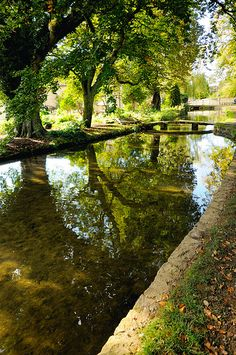 Stream in the Cotswolds, England